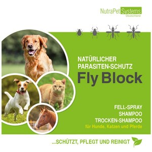 FLY-Block-Flyer-FINAL-2017-Front